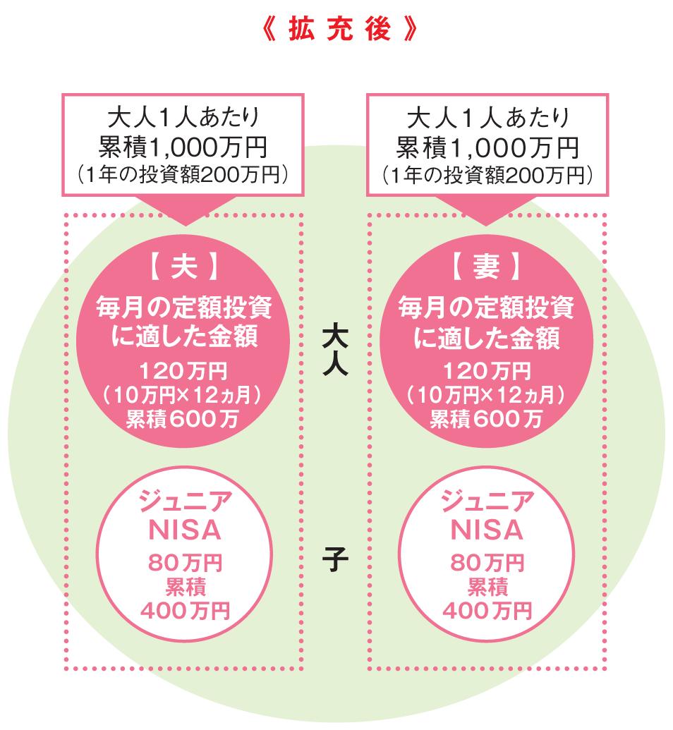 NISA(改正後)