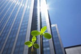 企業版ふるさと納税の創設|平成28年度税制改正解説
